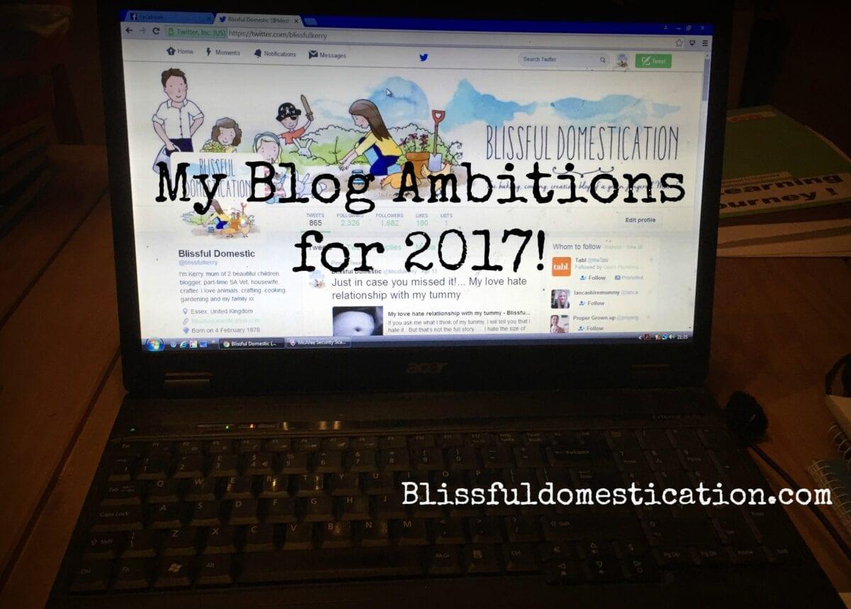 Blog Ambitions