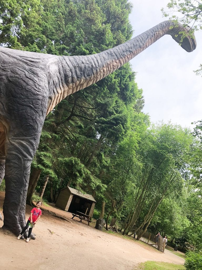 The huge brachiosaurus