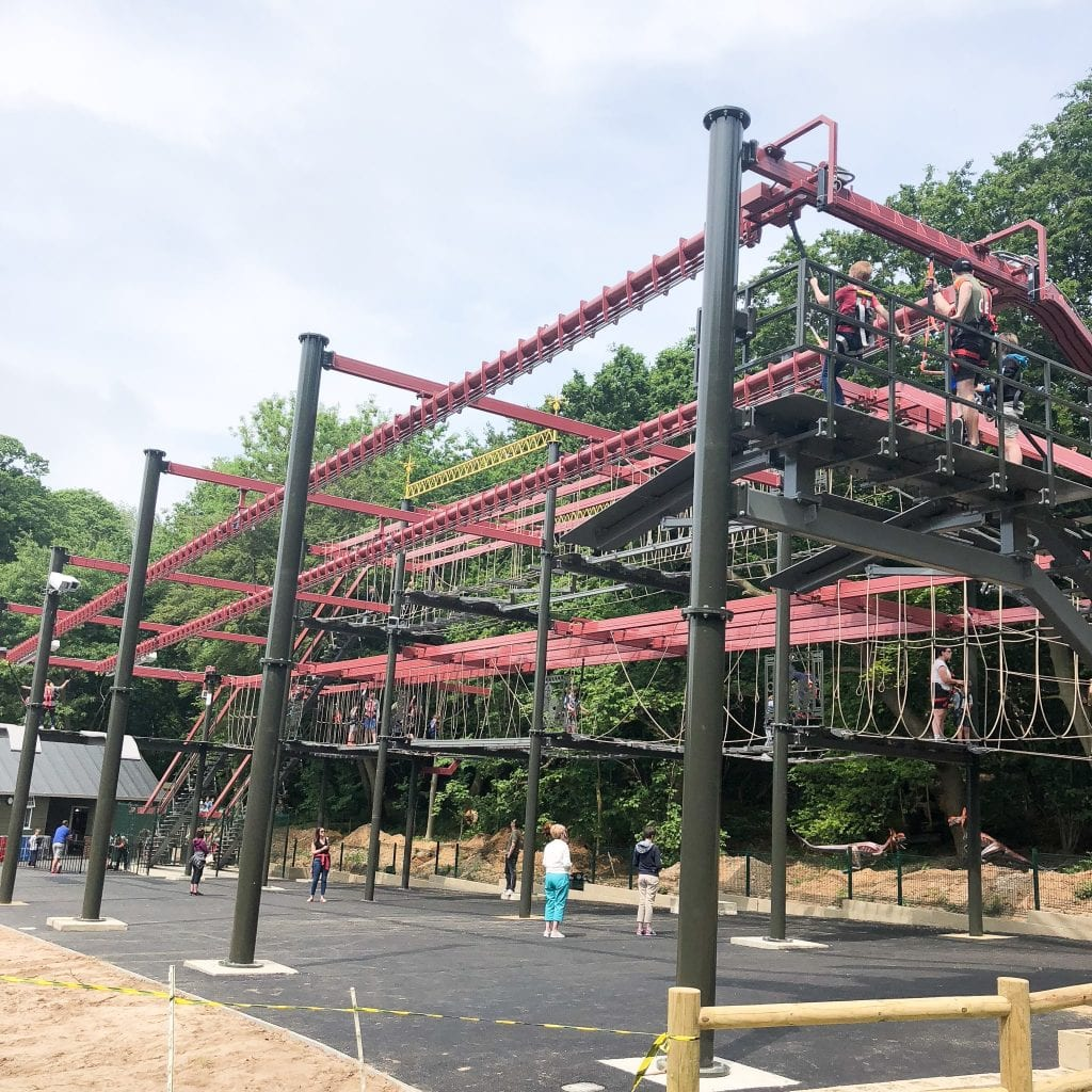The Predator! High Ropes