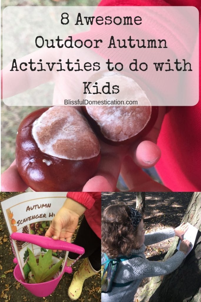 Outdoor Autumn Activities Pin