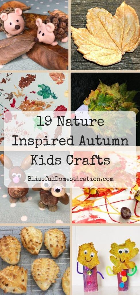 19 Nature Inspired Autumn Kids Crafts Pin