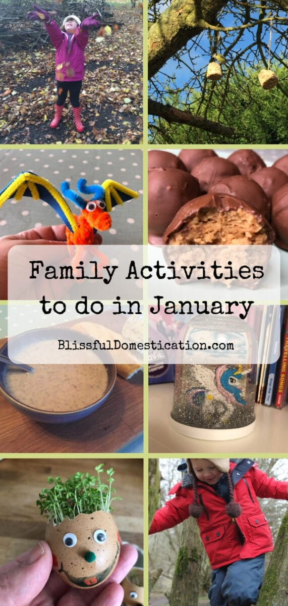 Family activities to do in January pin