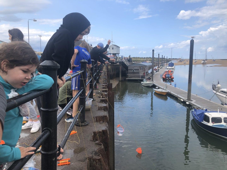 Crabbing at Wells-next-the-sea Quay