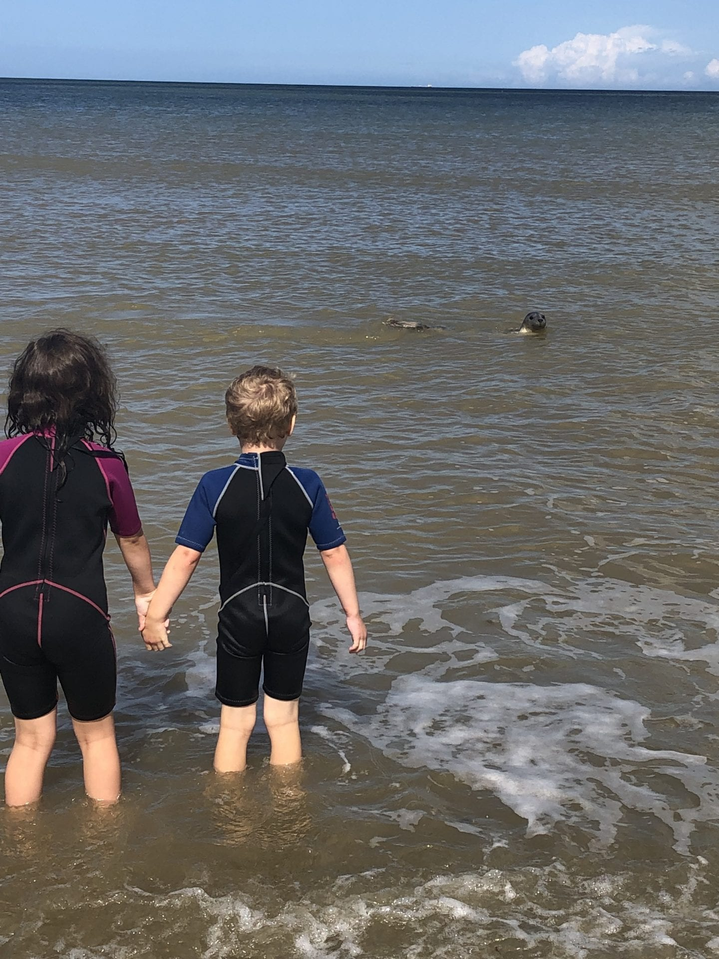 2 children standing in the sea and a seal is in the distance