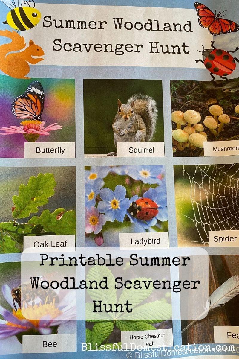 Summer woodland scavenger hunt pin