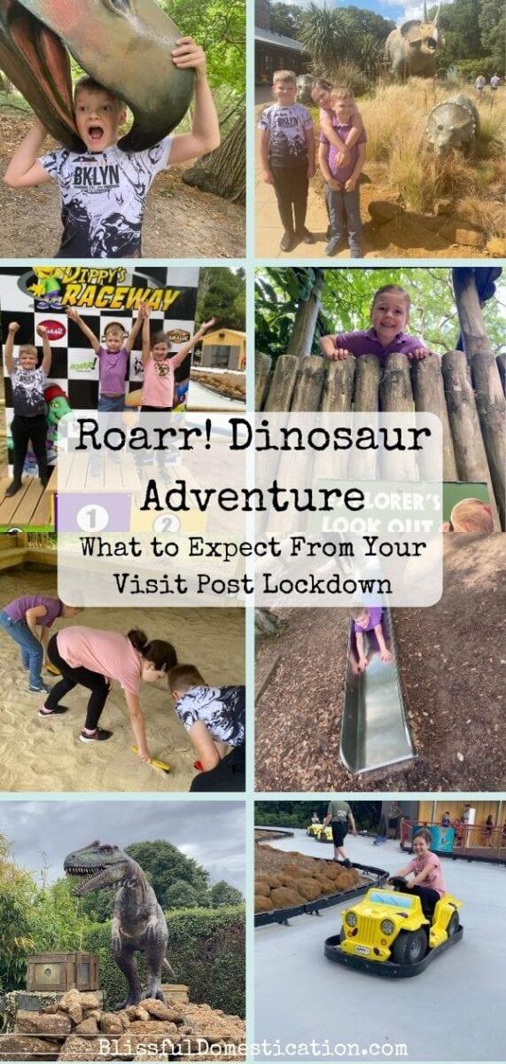 Roarr! dinosaur Adventure PIn