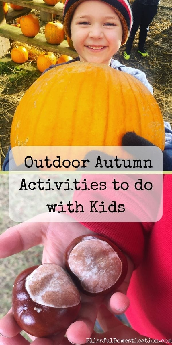 Outdoor Autumn Activities Pin