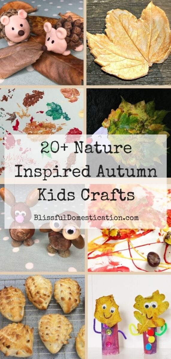 Nature Inspired Autumn Kids crafts pin