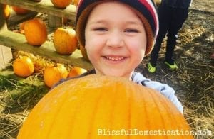 Pumpkin patches Featured IMage
